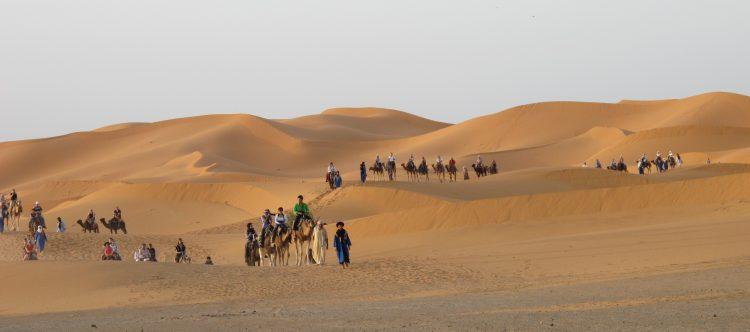 desert-586551