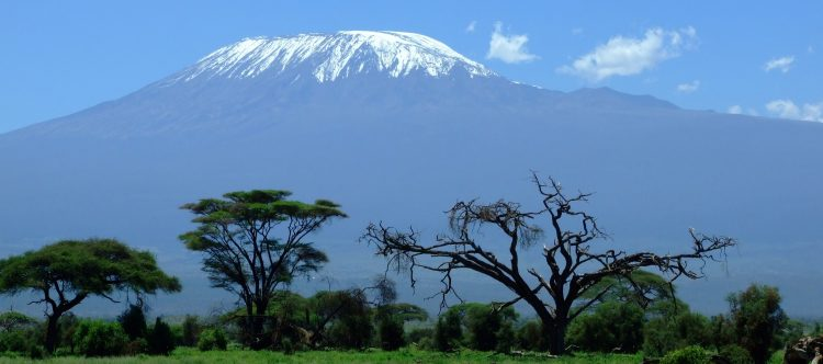 kilimanjaro-1025146