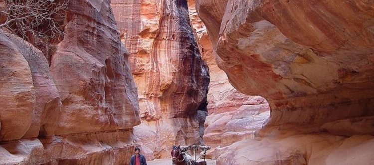 jordan-tours-727039