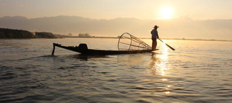 fisherman-239487
