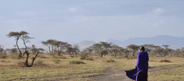 serengeti-2011312