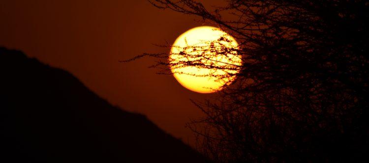 sunset-650620